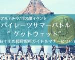 2019パイレーツサマーバトルゲットウェットの鑑賞ガイド!着替え場所も!
